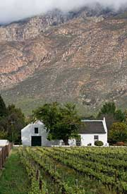 Vineyard and historic thatched house against mountain backdrop, Montagu, Western Cape. © Maré Mouton