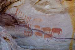 Rock painting of people and elephants, Cederberg, South Africa. © Duncan Miller