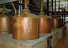 Brandy stills made by Woudberg & Son which are still in use at KWV in Worcester today. © Dudley Barker
